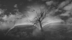 Photographie Vincent Le Borgne - Photographie surréaliste